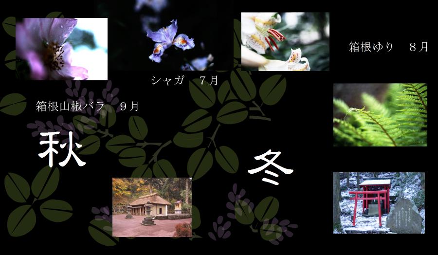 芦之湯の自然