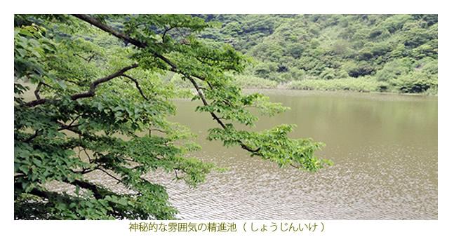 箱根精進池